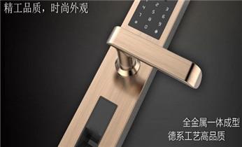 电子智能指纹锁开锁-报警维修-指纹密码无效修复_开锁公司电话-开锁维修锁换锁体芯-防盗门-保险箱柜